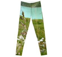 Swaying Grass In Austrian Mountains Leggings