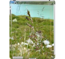 Swaying Grass In Austrian Mountains iPad Case/Skin