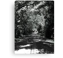 Old Saint Augustine Road Canvas Print