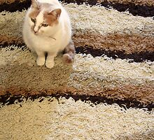 Lefki standing on a rug by Angela Strati