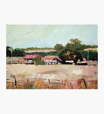 Warwick Farm Study Photographic Print