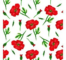 Watercolor red poppy Photographic Print