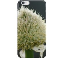Onion Flowers iPhone Case/Skin