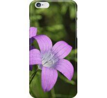 Spreading Bellflower (Campanula patula) iPhone Case/Skin