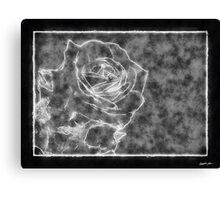 Pink Roses in Anzures 1 Outlined Black Canvas Print