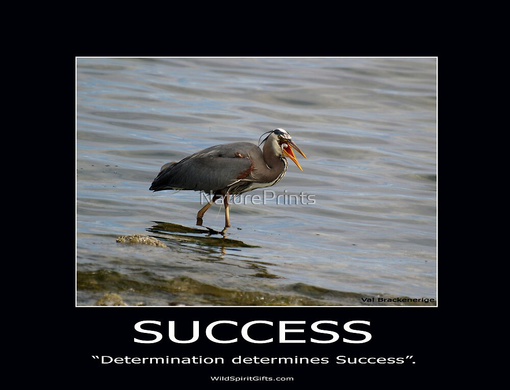 Great Blue Heron Motivational Poster by NaturePrints