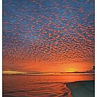 fiery sunset in the cook islands by David Sarkin