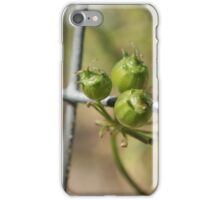Coriander Berry iPhone Case/Skin