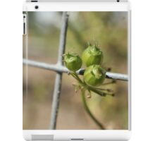Coriander Berry iPad Case/Skin