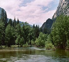 Trees, mountains and water by Sandy Hopkins