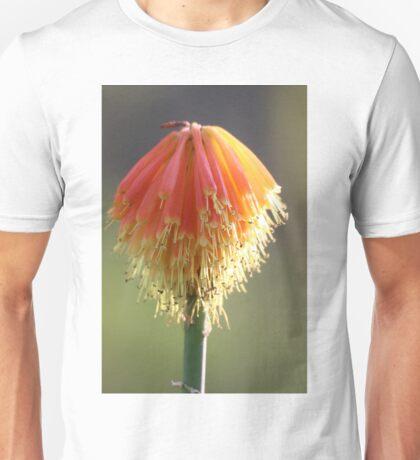 Adelaide Botanic Gardens Unisex T-Shirt
