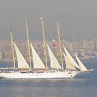 Sailing the Bosphorus by Anita Donohoe