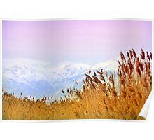 Lone Peak Wilderness Area - Backdrop Poster