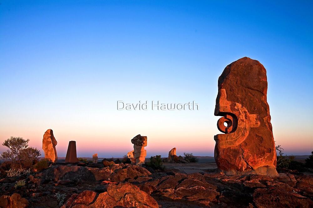 The Living Desert by David Haworth