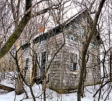 Cottage in the Forest by wiscbackroadz