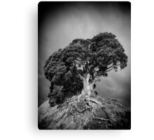 Here I Stand Canvas Print
