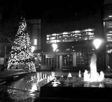 Christmas in the Square. by Katherine Johns