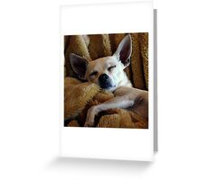 Skinny And His Blankie Greeting Card