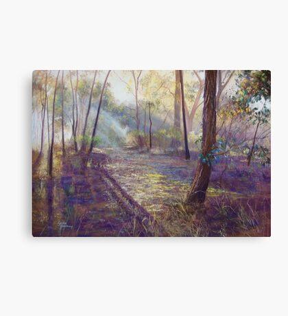 'Dappled Light'  Canvas Print