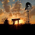 Into the West - Haigslea Qld Australia by Beth  Wode