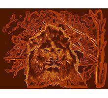 Wooden Lion Watching Over Its Kingdom  Photographic Print