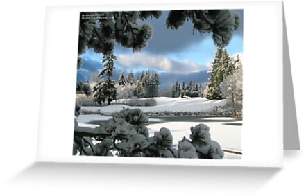winter blues by gabryshak