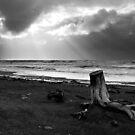 Hokitika Beach by Luke and Katie Thurlby
