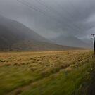 Tranz-Alpine Express by Luke and Katie Thurlby