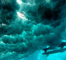 Duck Dive, Samoa. by Stewart Allen