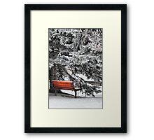 Frosty Delight Framed Print