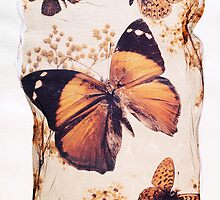Brown Butterfly by Paul Williams by Paul Williams