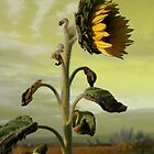 Sunflower art by Helene Chevarie