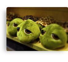 Turtle Toys Canvas Print