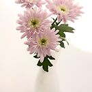 chrysanthems in white vase by OldaSimek