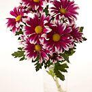 chrysanthems in glas vase by OldaSimek