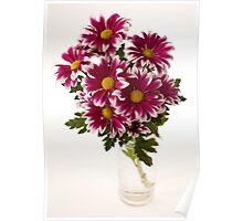 chrysanthems in glas vase Poster
