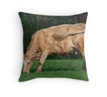 Swishing Tails Throw Pillow