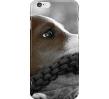 Jack and the rope... (Jack Russel)  iPhone Case/Skin