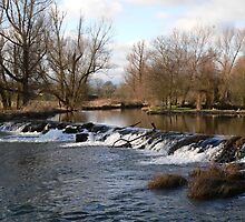One of the Weirs,on Kings River at Kells,Co.Kilkenny. by Pat Duggan
