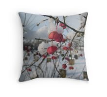 Red berries in the snow, East Sussex Throw Pillow