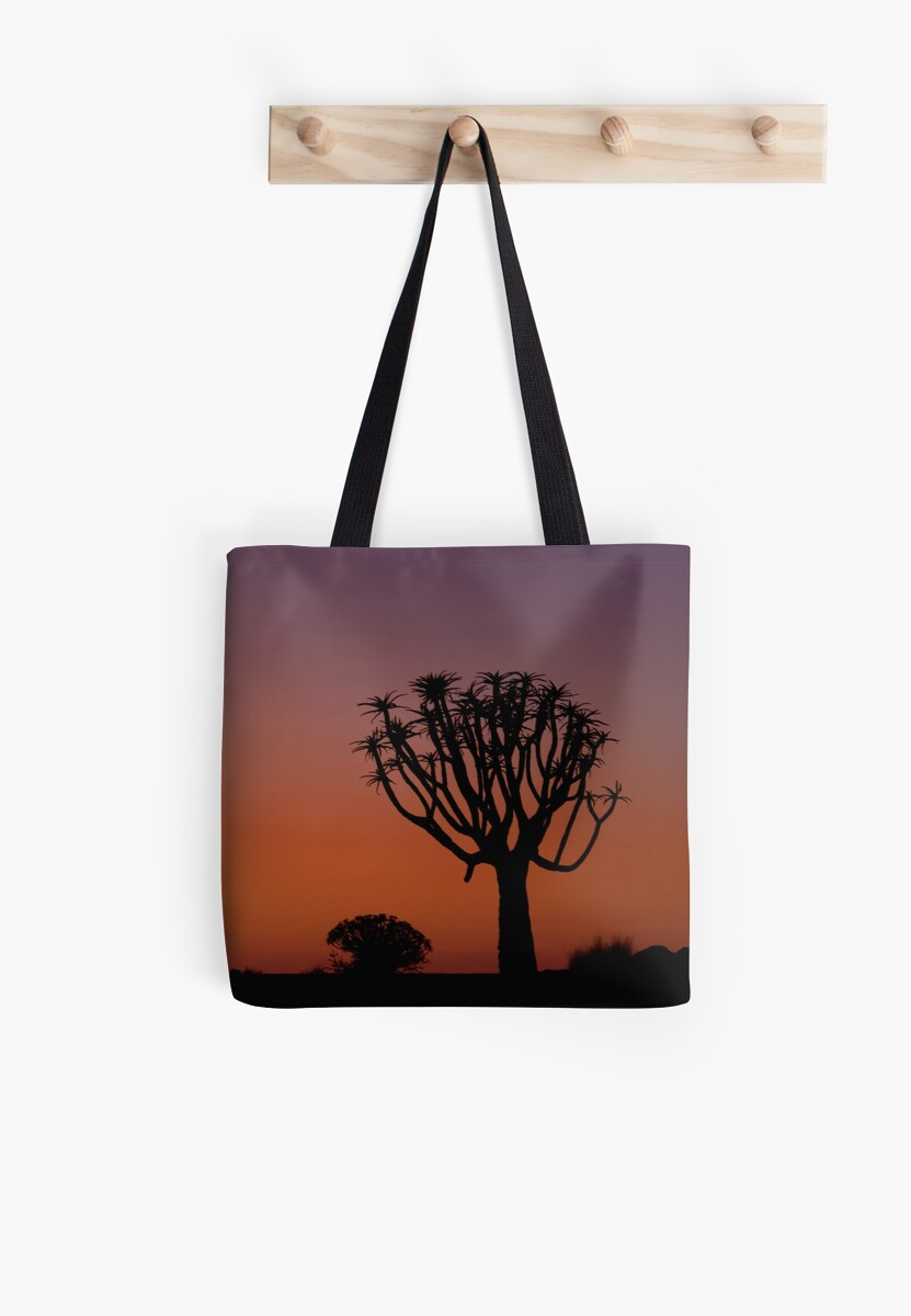 The Quiver Trees of Namibia Africa by Beth  Wode