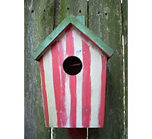 Birdhouse Photographic Print