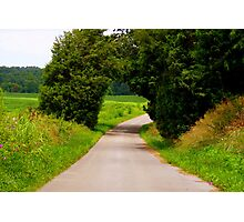 Country Canopy Photographic Print