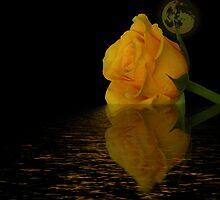 Moonlight and Roses by inkedsandra