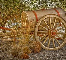 "Little antique wagon on display at the ""Vroue Monument"" in Bloemfontein, South Africa by Qnita"