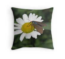 Drying My Wings After The Rain Throw Pillow
