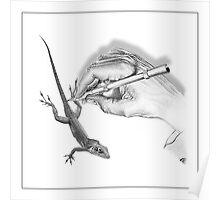 Untitled - (After Escher) Poster