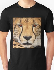 Cold Stare T-Shirt