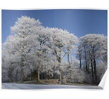 Winter Coat Poster