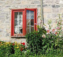 Garden View by Kathleen Brant